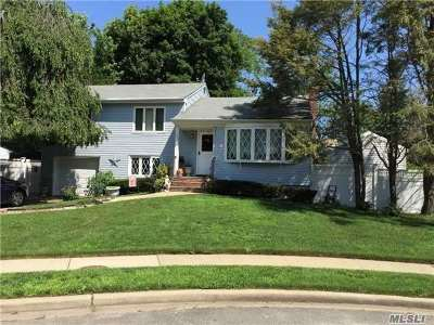 Farmingdale Single Family Home For Sale: 6 Regina Rd