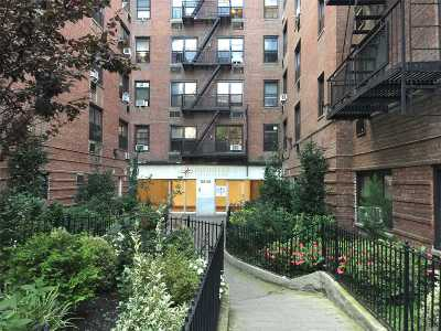 Flushing Condo/Townhouse For Sale: 132-35 Sanford Ave #315