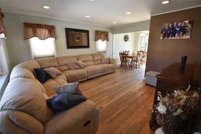 New Hyde Park Single Family Home For Sale: 440 S Hillside Dr