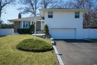Jericho Single Family Home For Sale: 138 Maytime Dr