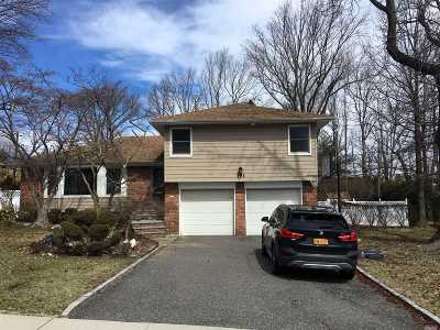 Manhasset Hills Single Family Home For Sale: 191 Robby Ln