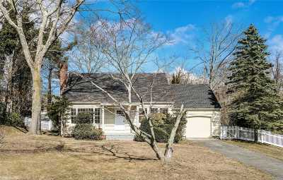 Brookhaven Single Family Home For Sale: 19 Highview Blvd