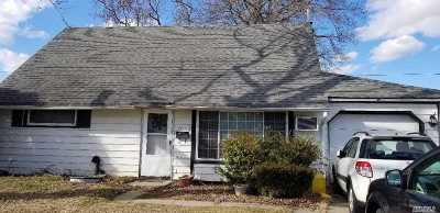 Bethpage Single Family Home For Sale: 4010 Jean Ave