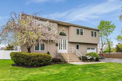 Massapequa Single Family Home For Sale: 4470 Merrick Rd
