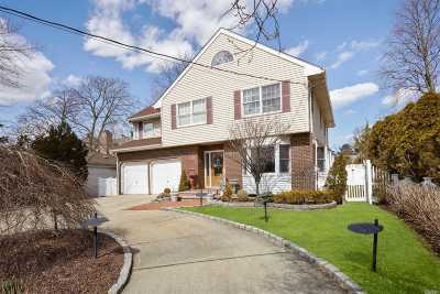 Rockville Centre Single Family Home For Sale: 69 Lakeview Ave