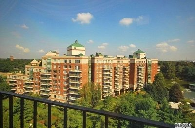 Garden City Condo/Townhouse For Sale: 111 Cherry Valley Ave #M5