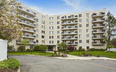 Westbury Condo/Townhouse For Sale: 135 Post Ave #5 D