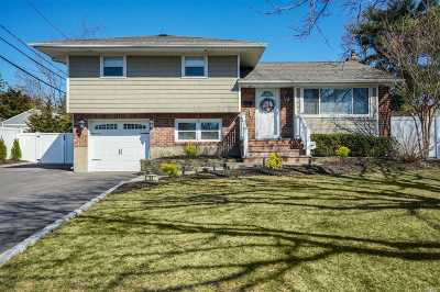 Commack Single Family Home For Sale: 33 Walter Ct