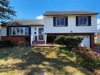 Westbury Single Family Home For Sale: 29 Frances Dr