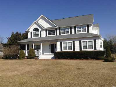 Bayport Single Family Home For Sale: 269 S Gillette Ave