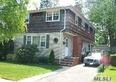 Farmingdale Single Family Home For Sale: 86 Beechwood St