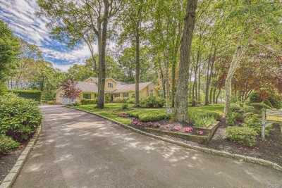 Smithtown Single Family Home For Sale: 10 Tree Top Ter
