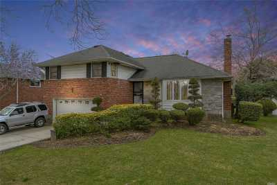 Westbury Single Family Home For Sale: 851 Baldwin Dr