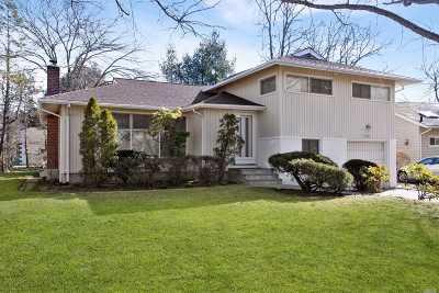 East Meadow Single Family Home For Sale: 1541 Dieman Ln