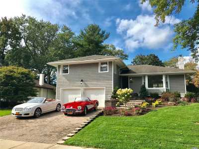 Jericho Single Family Home For Sale: 115 Maytime Dr