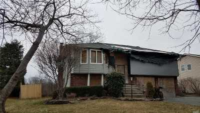 Oakdale Single Family Home For Sale: 206 Connetquot Rd