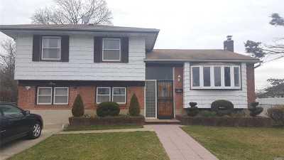 Massapequa Single Family Home For Sale: 3 Denise St