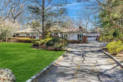 Dix Hills Single Family Home For Sale: 1095 Westminster Ave
