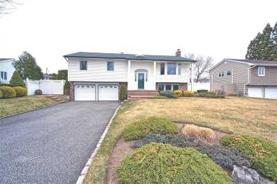 Smithtown Single Family Home For Sale: 163 S Plaisted Ave