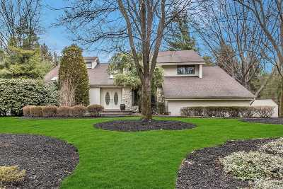Dix Hills Single Family Home For Sale: 3 Deanna Ct