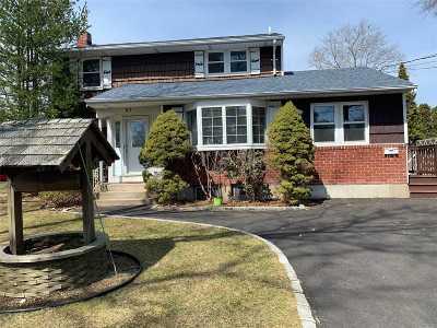 Commack Single Family Home For Sale: 27 Carmela Ln