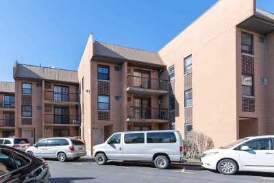 Flushing Condo/Townhouse For Sale: 75-22 Parsons Blvd #D3