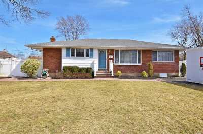 Commack Single Family Home For Sale: 3 Abbey Dr