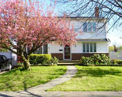Farmingdale Single Family Home For Sale: 26 Lowell Dr