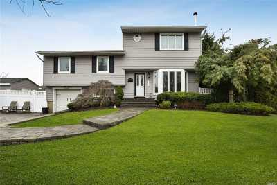 Syosset Single Family Home For Sale: 52 Pickwick Dr