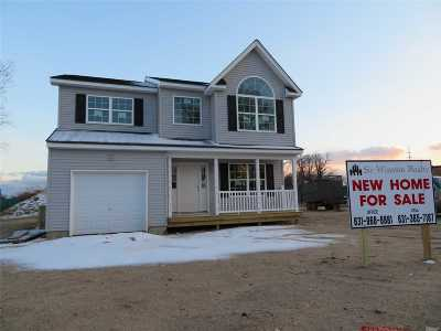 Bay Shore Single Family Home For Sale: 8 Brewster St