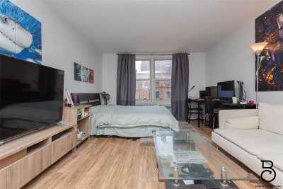Astoria, Sunnyside, Long Island City Condo/Townhouse For Sale: 30-44 29th St #4D