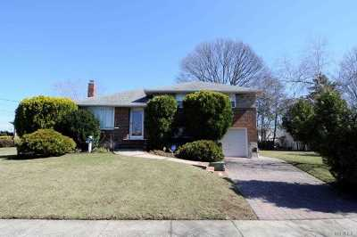 Bethpage Single Family Home For Sale: 20 Union Ave