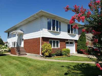 Franklin Square Single Family Home For Sale: 284 Ribbon St