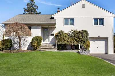 Syosset Single Family Home For Sale: 66 Circle Dr