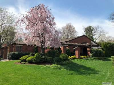 Manhasset Condo/Townhouse For Sale: 137 Darters Ln