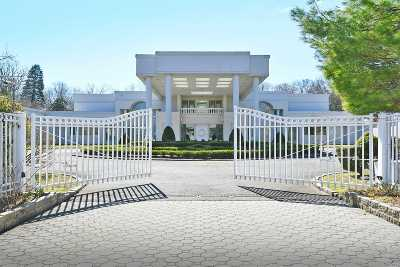 Great Neck Single Family Home For Sale: 128 Windsor Gate