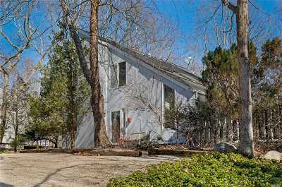 East Hampton Single Family Home For Sale: 88 Springy Banks Rd