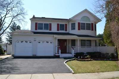 Bethpage Single Family Home For Sale: 245 Evergreen Ave