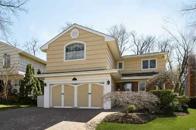 Great Neck Single Family Home For Sale: 10 Meryl Ln