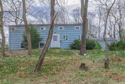 Kings Park Single Family Home For Sale: 399 Kohr Rd