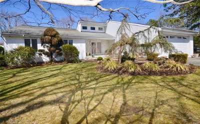 Dix Hills Single Family Home For Sale: 36 Millet St