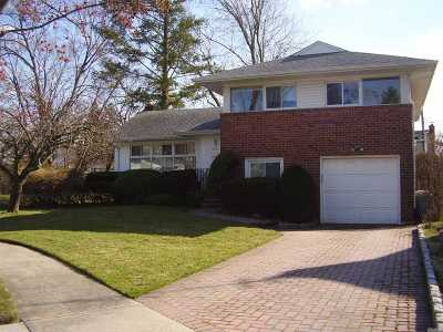 East Meadow Single Family Home For Sale: 642 Pine Ln