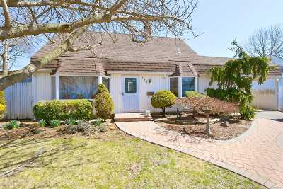 Levittown Single Family Home For Sale: 113 Cotton Ln