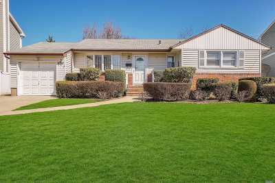 Farmingdale Single Family Home For Sale: 11 3rd Ave