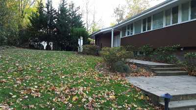 Great Neck Single Family Home For Sale: 238 Kings Point Rd