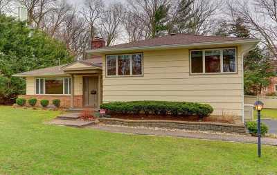 Roslyn Single Family Home For Sale: 29 Sycamore Dr