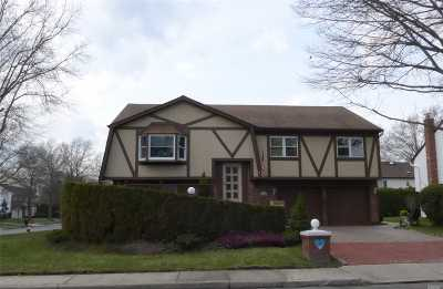 Westbury Single Family Home For Sale: 1 Karen Ct