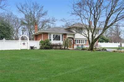 Commack Single Family Home For Sale: 45 Ruth Blvd