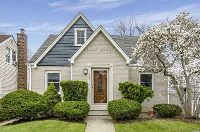 Franklin Square Single Family Home For Sale: 243 Harrison St