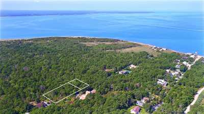 Amagansett Residential Lots & Land For Sale: 39 & 47 Bay View Ave